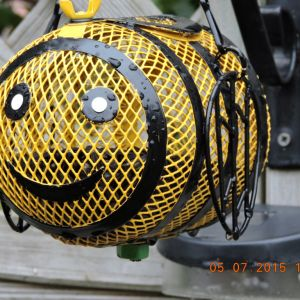 A big bee !!
