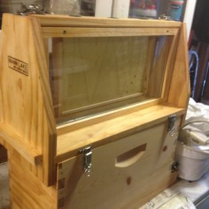 new observation hive